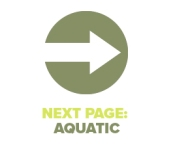 Next Page Aquatic