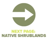Next Page Native Shrublands