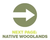 Next Page Native Woodlands