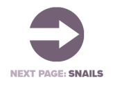 Next Page Snails.jpg