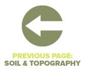 Previous Page Soil Topography
